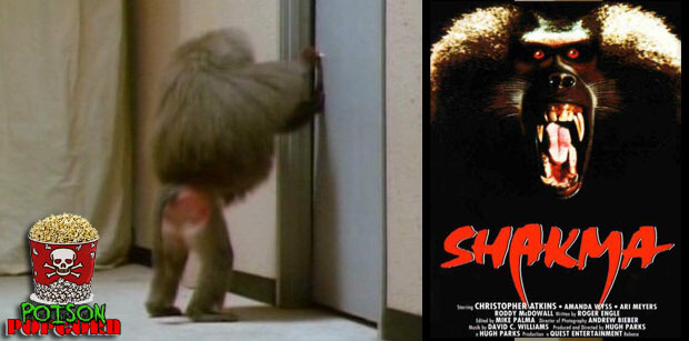 poison popcorn shakma baboon movie